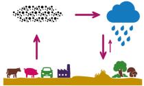 Emissie reactief stikstof en transport als fijnstof